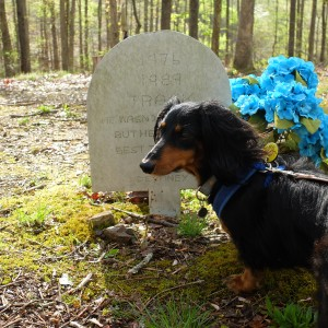 No, she's not a coon dog, but she still paid her respects,